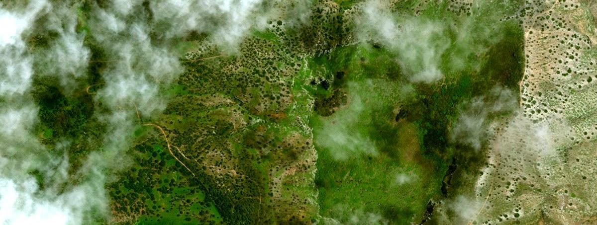 Ecosystems BLDGBLOG - Ascension island google map